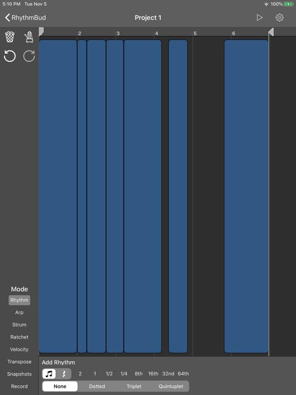 RhythmBud - AUv3 MIDI FX screenshot 11
