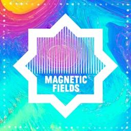 Magnetic Fields Festival 2019