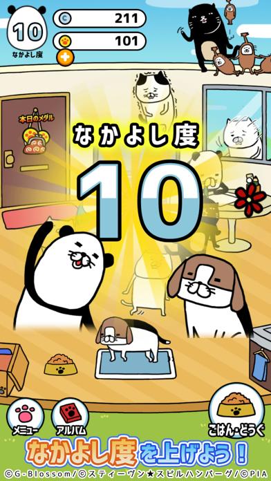 パンダと犬のワンダフルライフ screenshot1
