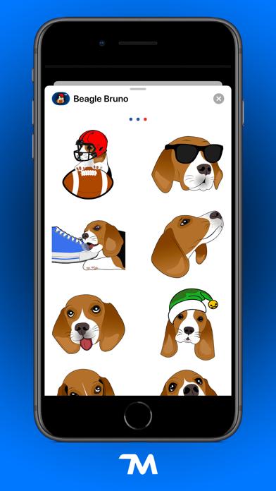 Beagle Bruno screenshot four