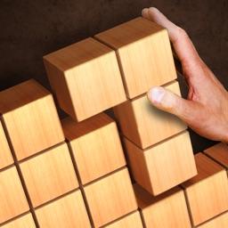 Wood Puzzle 3D Cube Block