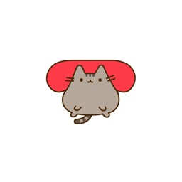 辉辉猫猫肥肥