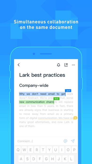 Lark - Workstream Platform