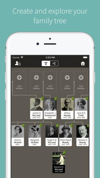 Ancestry review screenshots