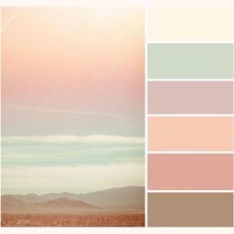 Colors Palette - scan photo