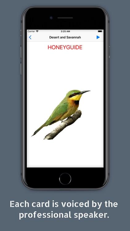 Kids' Library: Birds screenshot-3