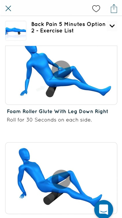Foam Rolling Exercises screenshot-7