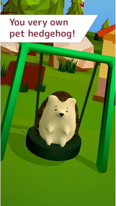 My Little Hedgehog