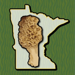 Minnesota Mushroom Forager Map