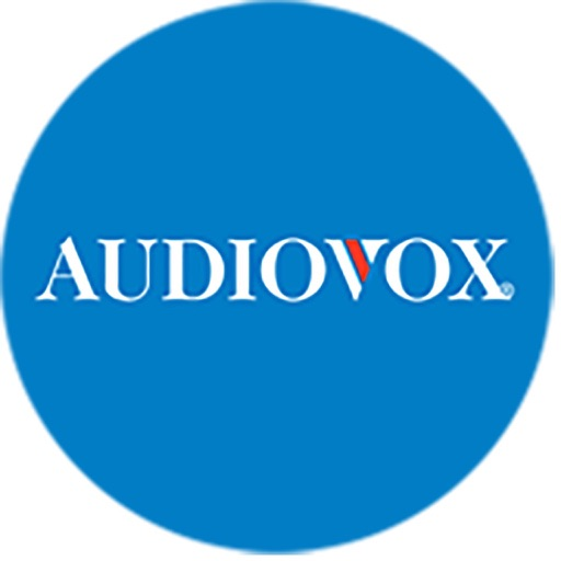 Audiovox Headrest