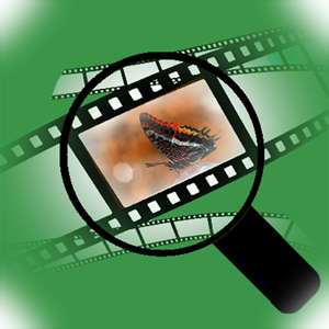 Video Player Magnifier - Photo & Video app