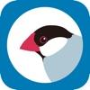 Buncho for Twitter - iPadアプリ