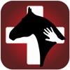 Horse Side Vet Guide