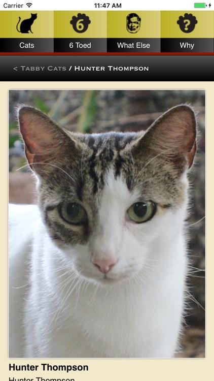 Hemingway Cats screenshot-4