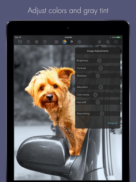 Color Splash for iPad screenshot