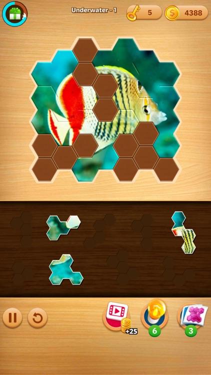 Jigsaw Puzzles Hexa Ⓞ screenshot-7