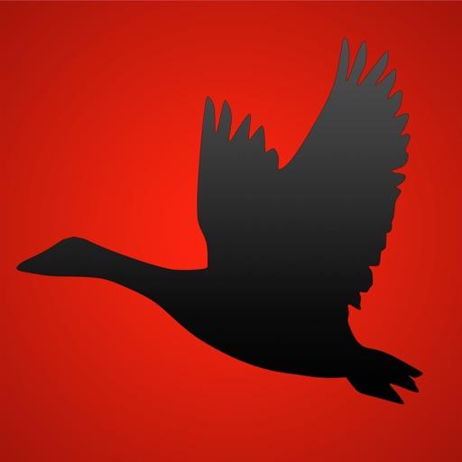 Goose Calls Pro