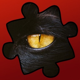 Jigsaw Puzzles-Fun Puzzle Game