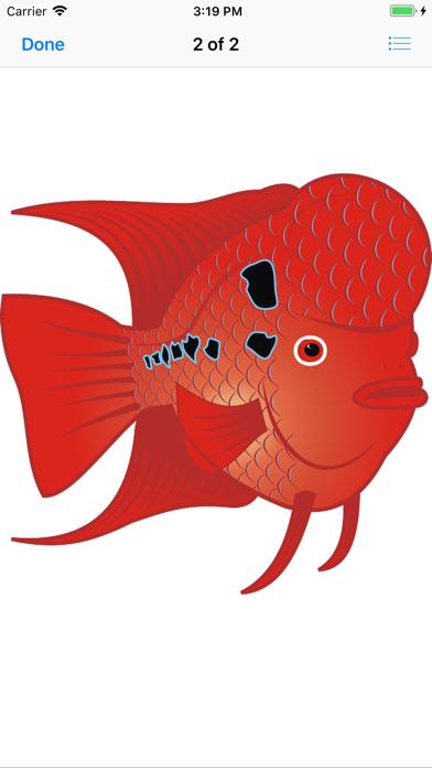 点击获取Here Little Fishy