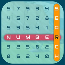 Number Puzzle-The Search Game