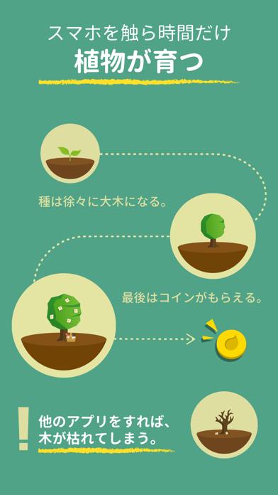 Forest - 集中力を高めるのおすすめ画像3