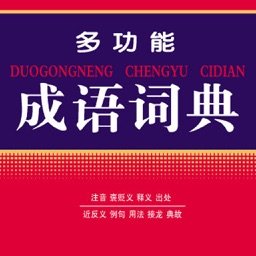 Chinese Idiom Dictionary