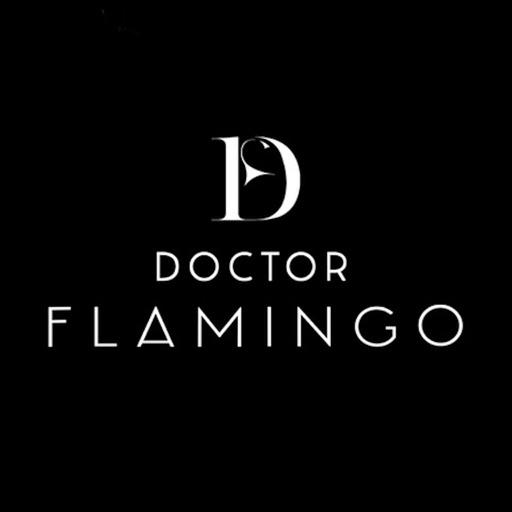 Doctor Flamingo Music
