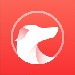 灵缇游戏加速器 - 主机游戏&手机游戏全支持
