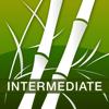 Human Japanese Intermediate