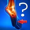 Anatomy Foot Quiz - iPadアプリ