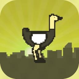Ostrich Run PRO