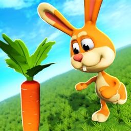 Bunny Run AR