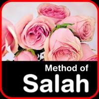 Codes for Method of Salah Hack