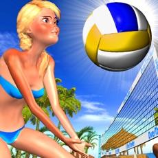 Activities of Beach Volleyball OverTheNet