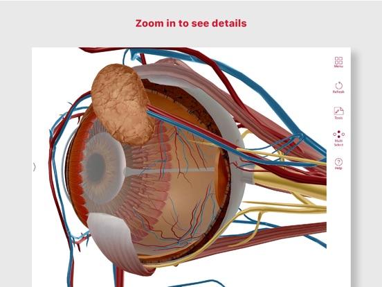 Anatomy & Physiology Screenshots