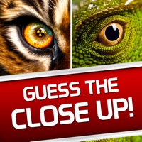 Guess the Close Up - Pics Quiz Hack Coins Generator