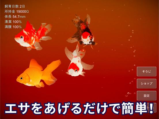 金魚育成アプリ「ポケット金魚」のおすすめ画像4