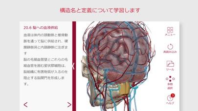 解剖学的構造と生理学 screenshot1