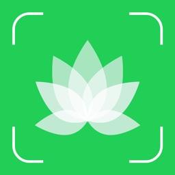 Plant Snap : Identify Plant