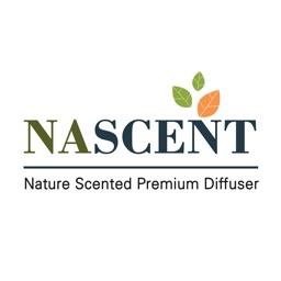 네이센트NASCENT - 핸드메이드 캔들 디퓨저