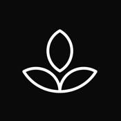 Emphasis - Focus Timer icon