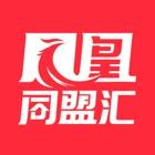 碧桂园凤凰同盟汇 icon