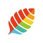 薄荷健康-减肥运动健身助手 icon