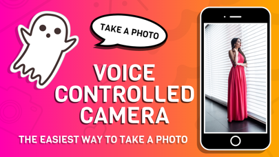 Voice Controlled Camera Screenshots
