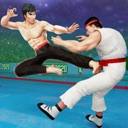Kung Fu Fight: Karate Fighter