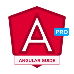 Guide to Learn Angular [PRO]
