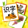 Chinese Flashcards for Baby