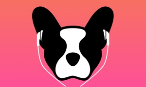 LillyPlayer Video Player