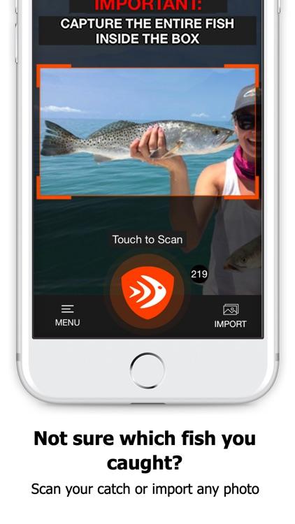 FishVerify: Regulations & ID
