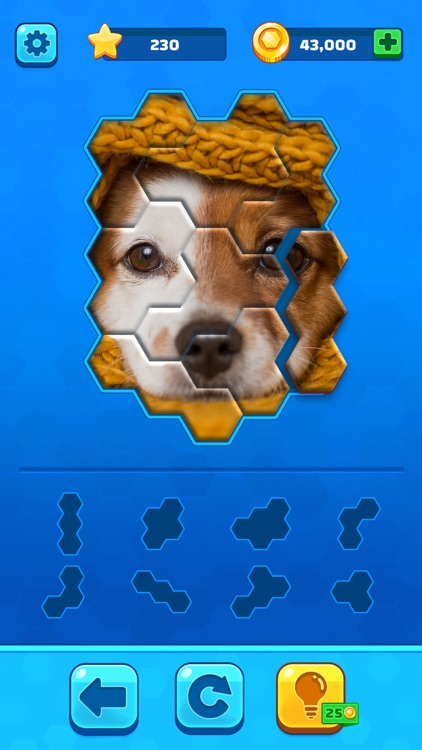 Hexa Jigsaw Puzzle ® screenshot-0